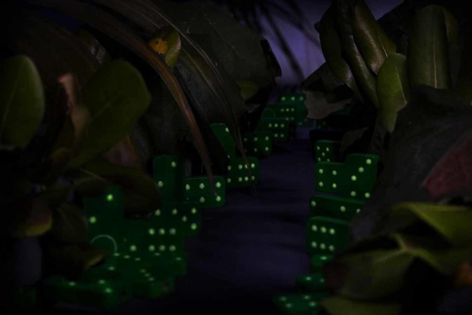 domino-gioco-luminoso-legno-ispirato-natura_2-960x640.jpg