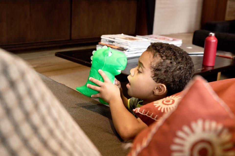 un-dinosauro-giocattolo-che-aiuta-ad-imparare-1-960x641.jpg